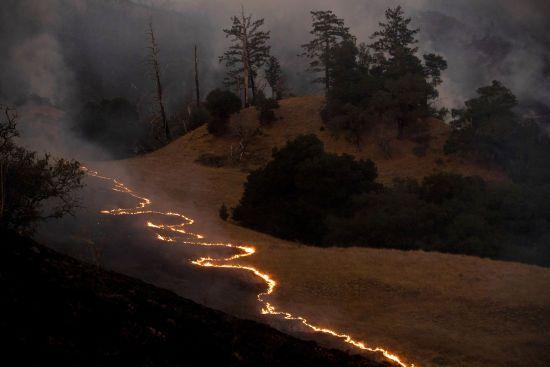 Пожежі у Каліфорнії залишили чорний шрам на планеті. NASA опублікувало світлину з космосу