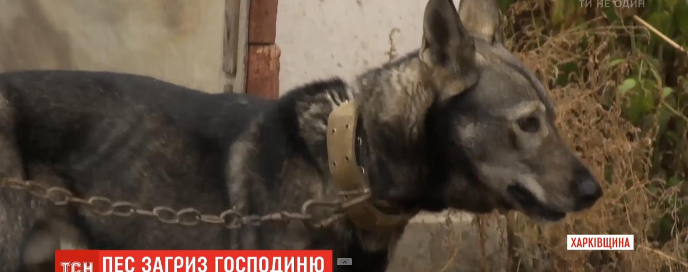 На Харьковщине домашняя собака не оставила на теле пенсионерки живого места. Женщина умерла в больнице