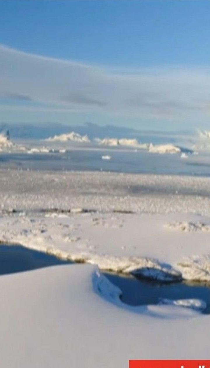 Полярник Ігор Дикий про життя в Антарктиді та кліматичні зміни