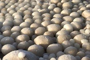 """Пляж в Финляндии усыпало """"ледяными яйцами"""""""