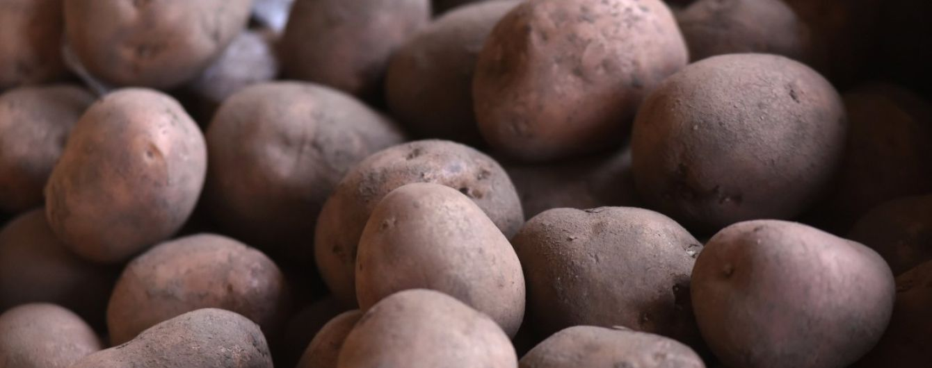 АМКУ: В Україні на 60% зросла ціна на картоплю і 50% - гречку