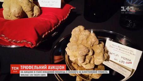 Различные трюфели за бешеные деньги продавали на аукционе в Италии