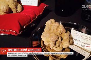 Різноманітні трюфелі за шалені гроші продавали на аукціоні в Італії