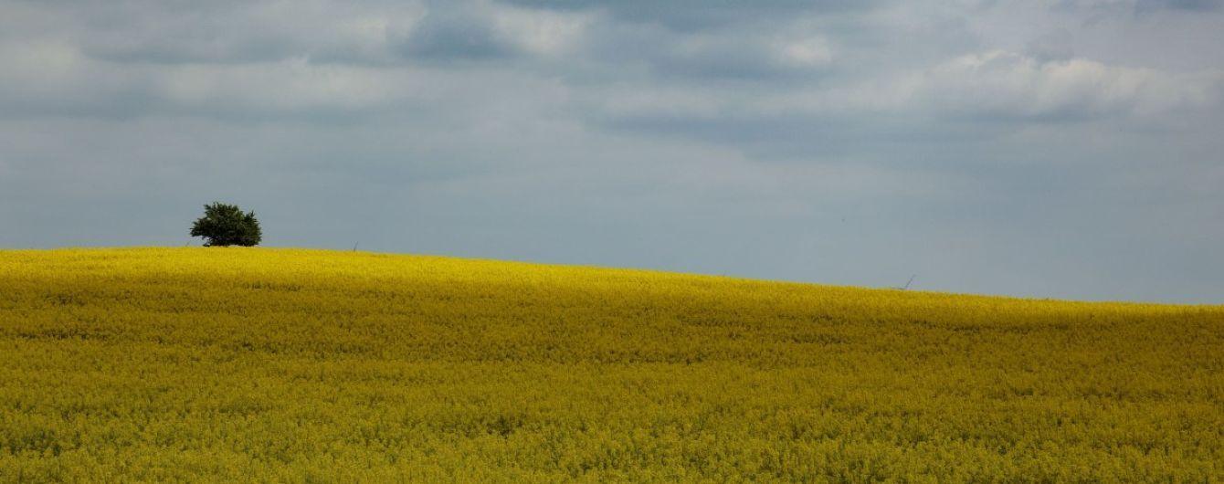 В Минэкономики назвали области-лидеры по объему незарегистрированных сельхозземель