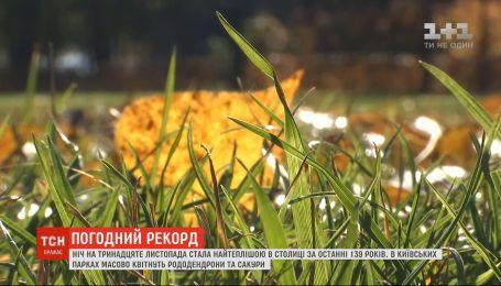 В Киеве ночь на 13 ноября была самой теплой за последние 139 лет