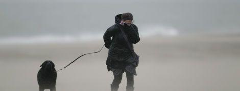 В Украине обещают тепло и солнце, но с сильным ветром - прогноз погоды