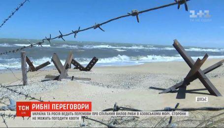 Україна та Росія ведуть перемовини щодо спільного вилову риби в Азовському морі