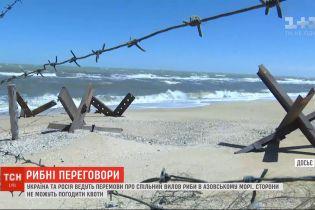 Украина и Россия ведут переговоры о совместном вылове рыбы в Азовском море