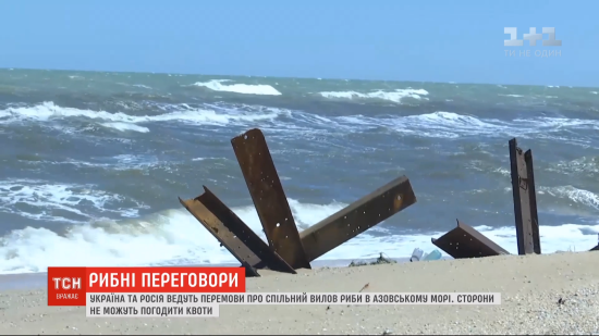 Україна дистанційно провела перемовини з РФ про риболовлю в Азовському морі