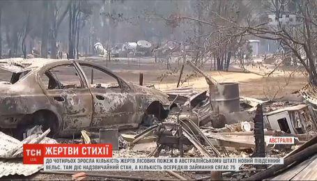 В Австралії зросла кількість загиблих під час катастрофічних лісових пожеж