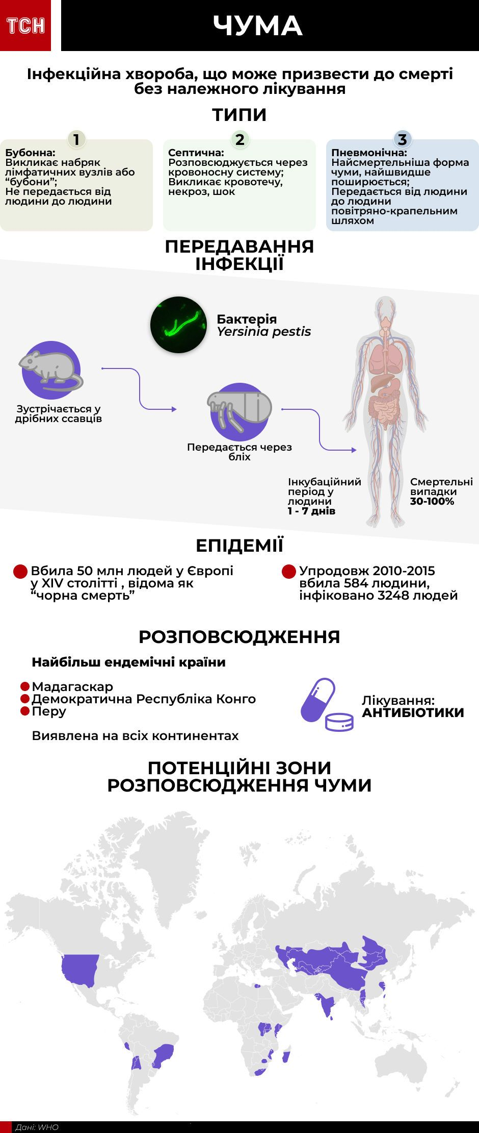 Чума, інфографіка