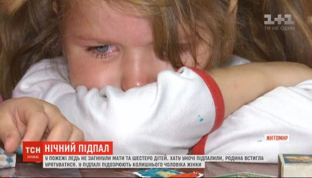 У пожежі на Житомирщині ледь не загинула мати і шестеро дітей