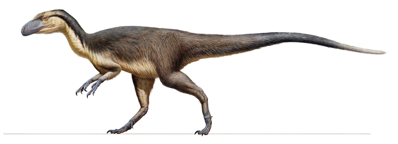 Пухнастий динозавр