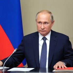 """""""Полный контакт"""": Путин охарактеризовал общение с Зеленским"""