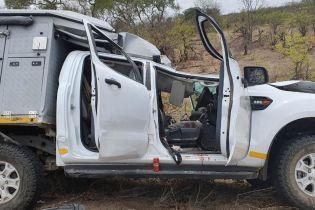Жирафа та турист загинули у ДТП під час сафарі у Південній Африці