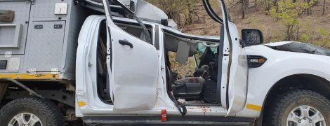 Жираф и турист погибли в ДТП во время сафари в Южной Африке