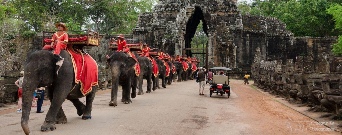 В Камбодже запретят катание на слонах