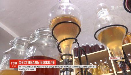 """На фестивалі """"Закарпатське божоле"""" винороби представили десятки сортів молодого вина"""