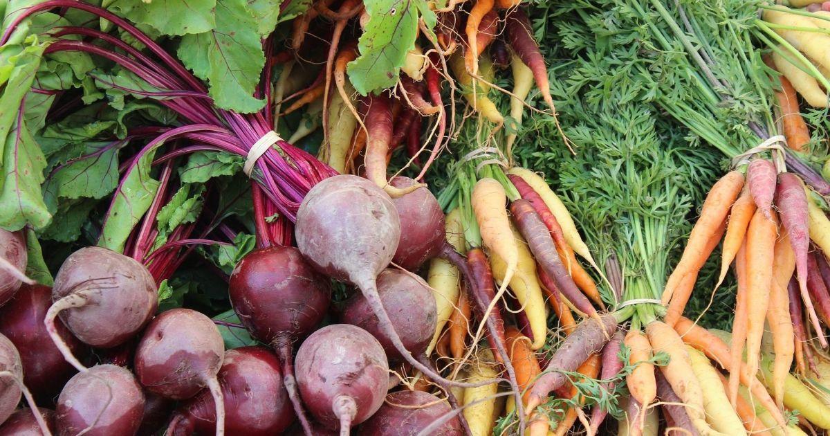 В Украине растут оптовые цены на морковь и столовую свеклу: сколько стоят овощи