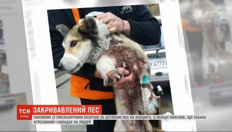 Волочив на ланцюгу собаку за авто: на Хмельниччині набирає обертів скандал із чиновником