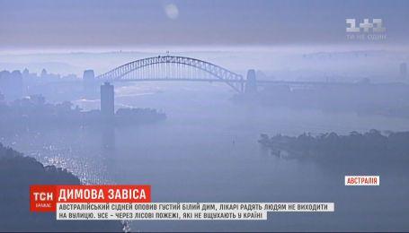 Густой белый дым окутал Сидней в Австралии - врачи советуют людям не выходить на улицу