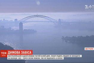Густий білий дим оповив Сідней в Австралії – лікарі радять людям не виходити на вулицю