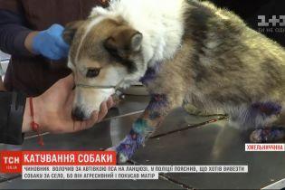 """Чиновник полтора километра тащил собаку за автомобилем, чтобы вывезти животное за село. Свои действия назвал """"гуманными"""""""