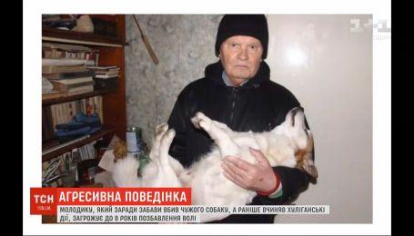 У Вінниці молодик заради забави убив собаку пенсіонера – йому загрожує до 8 років ув'язнення