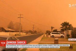 Сидней в дыму: крупнейший город Австралии страдает от последствий лесных пожаров