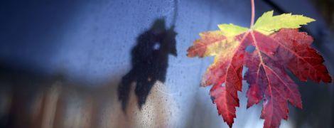 В Украине бушует сильный ветер и мороз: погода на пятницу