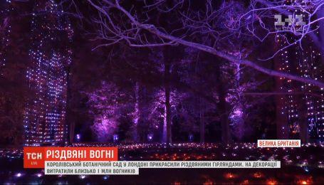 Королевский ботанический сад в Лондоне украсили рождественскими гирляндами