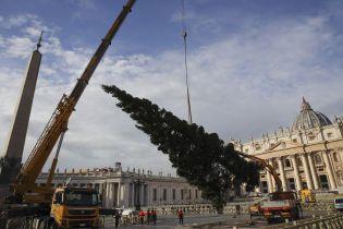 На площі Ватикану встановили 26-метрову різдвяну ялинку