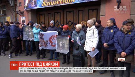 Зоозащитники пикетировали Одесский государственный цирк с требованиями соблюдать закон