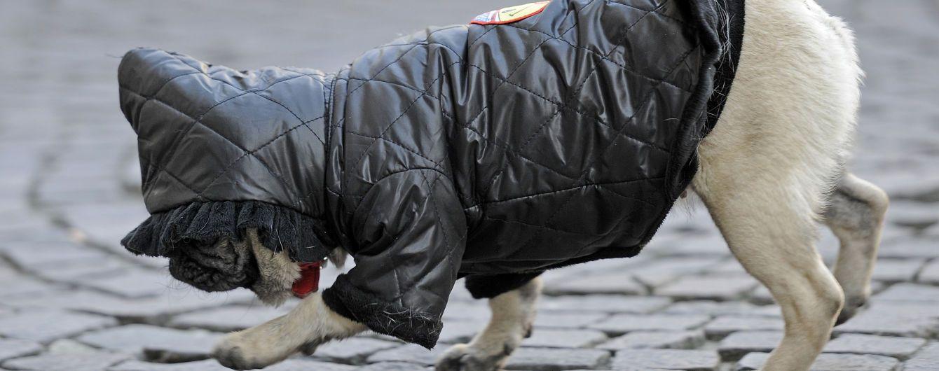 Небезпечна ожеледиця на дорогах та денний мороз: погода на вівторок