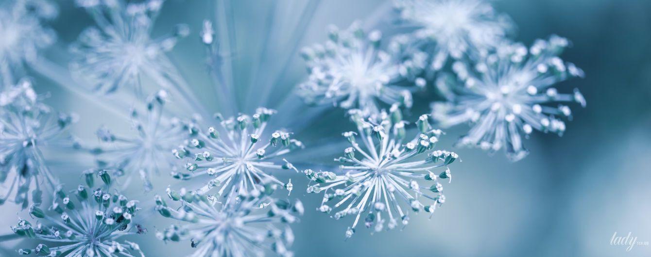 День позитивных мыслей и добрых дел: гороскоп на 27 ноября