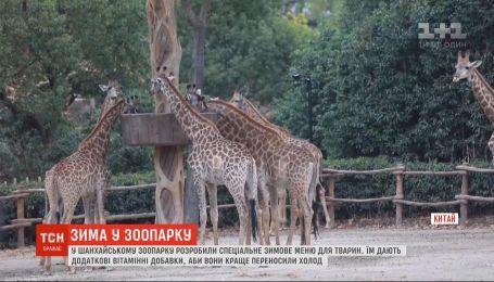 Из-за сильного похолодания животным в Шанхайском зоопарке сменили рацион