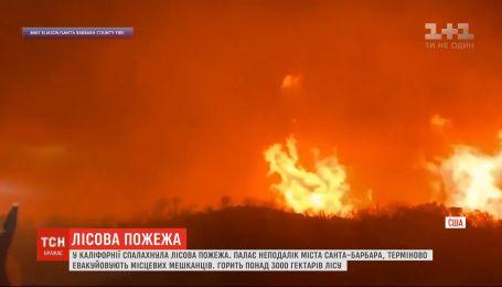 Крупный пожар охватил Калифорнийские леса