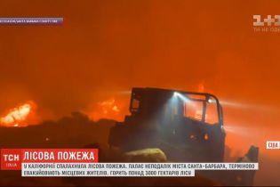 Масштабный огонь пылает в лесах Калифорнии - горит недалеко от Санта-Барбары