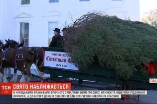 До Білого дому у США привезли величезну новорічну ялинку