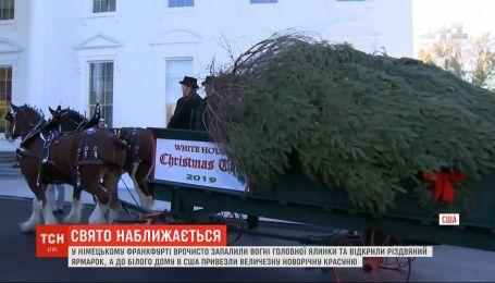 В Белый дом в США привезли огромную новогоднюю елку