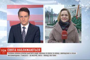 На Софийской площади в Киеве начали обустраивать рождественский городок