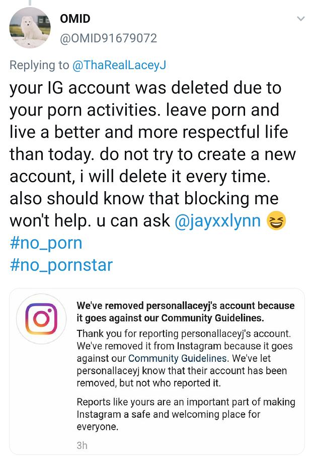 Блокування акаунтів порнозірок_2