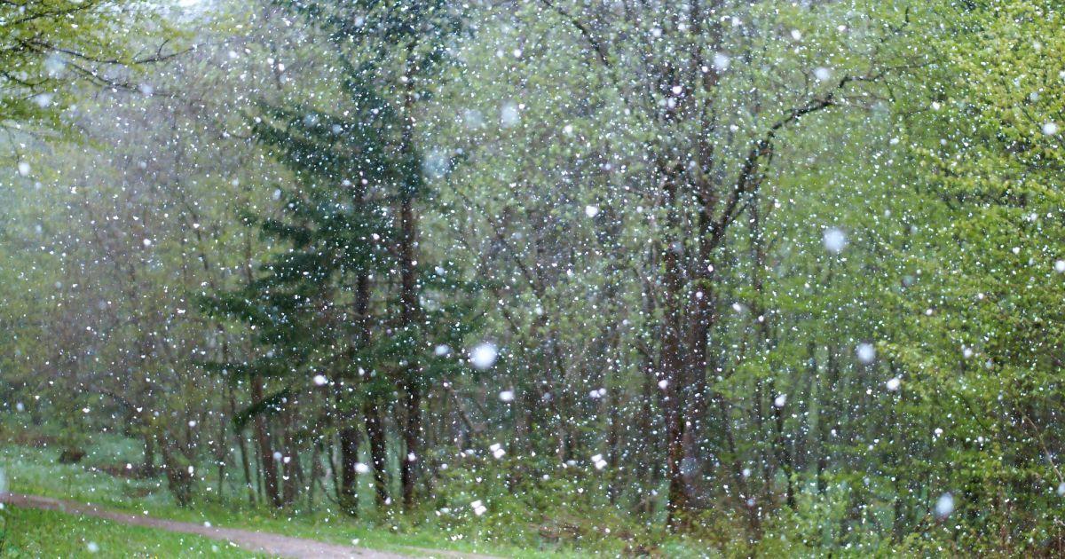 Тиждень похолодання, дощів та навіть мокрого снігу: прогноз погоди на 12-18 квітня