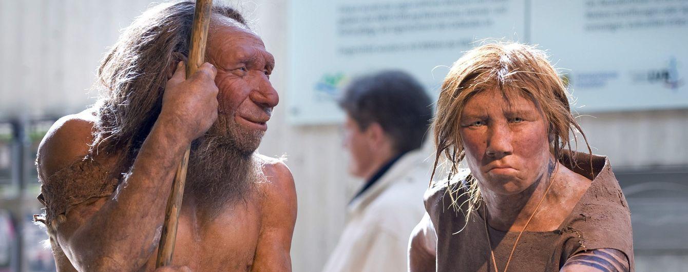 Homo sapiens ни при чем: неандертальцев мог убить секс с близкими родственниками и невезение