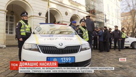 Во Львове создали группы полицейских, которые будут реагировать на насилие в семье