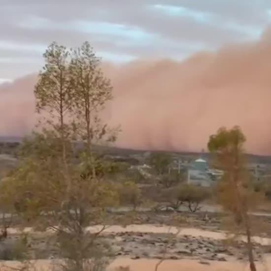 В Австралії через масштабні лісові пожежі утворилася величезна рожева стіна пилу