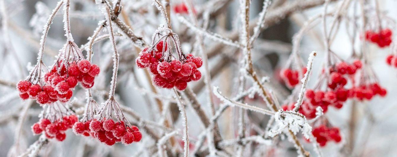 Гороскоп на 4 грудня для всіх знаків зодіаку: день нових ідей, любові і компліментів