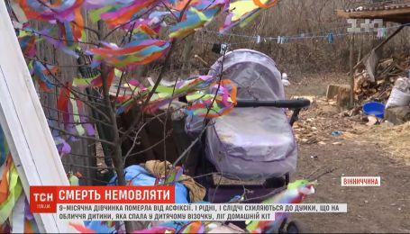 Домашній кіт задушив 9-місячне немовля на Вінниччині