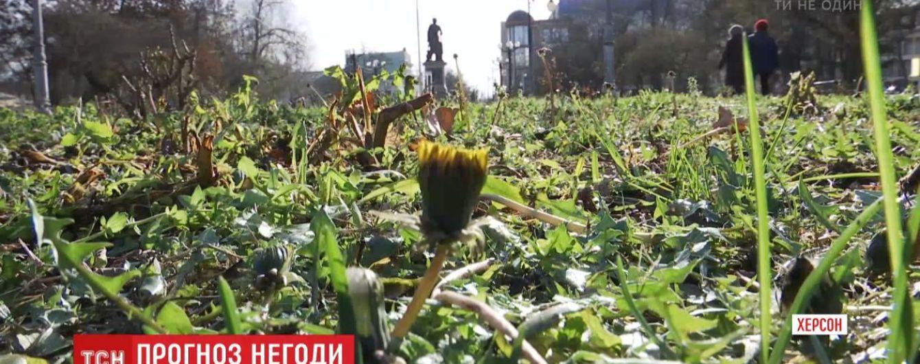 Карпаты и Запад страны накрывает снегом, а в Херсоне цветет одуванчик: какими межсезонными аномалиями встретила зима украинцев