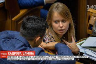 """""""Слуги народа"""" определились с главой парламентского Комитета по внешней политике"""